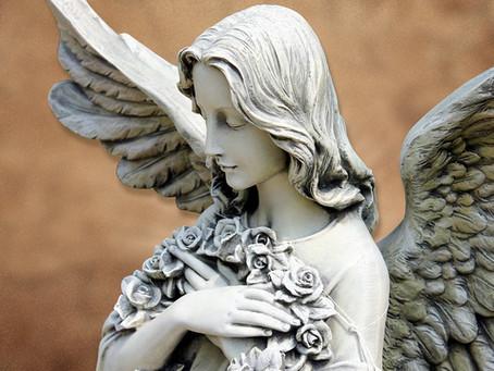 Litsée: l'huile des Anges