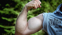 muscles-811479_1280.jpg