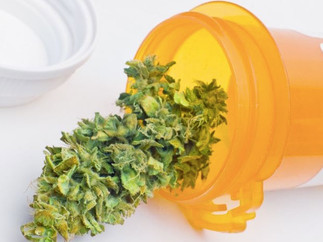 """Is Cannabis Safe? How Safe is """"Safe""""?"""
