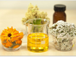 Terpenes and Terpenoids - The Entourage Effect