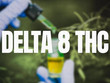 Why The Recent Rise In Delta-8 May Hurt The Future Of The Hemp Industry
