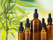 How to choose a CBD product