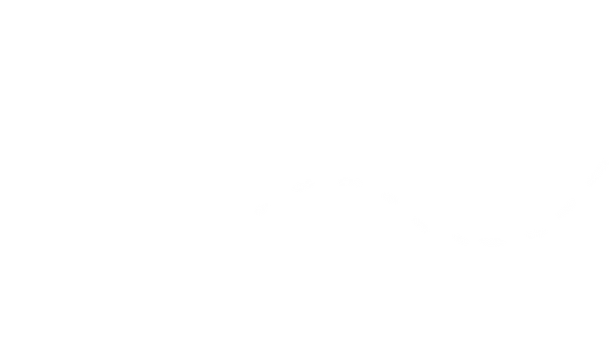 dotted lines white 3.png