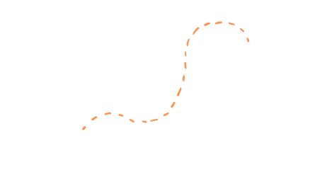 orange dotted line extra.png
