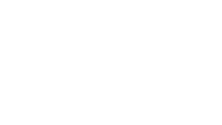 dotted lines white 2.png