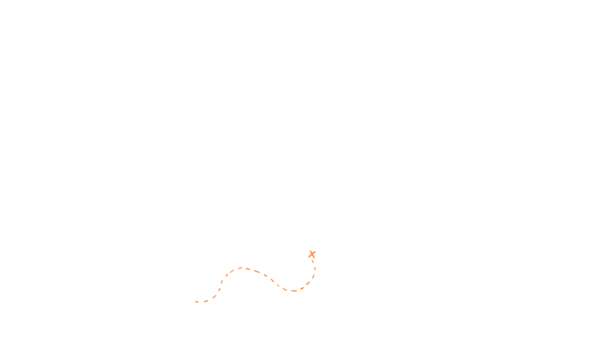 dotted line without globe orange.png