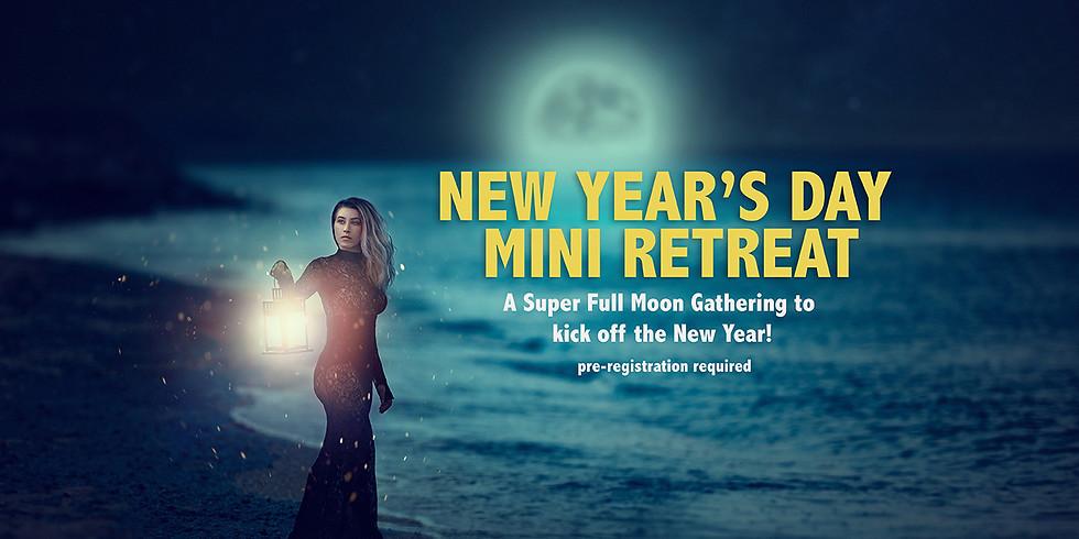 NEW YEAR'S DAY MINI RETREAT