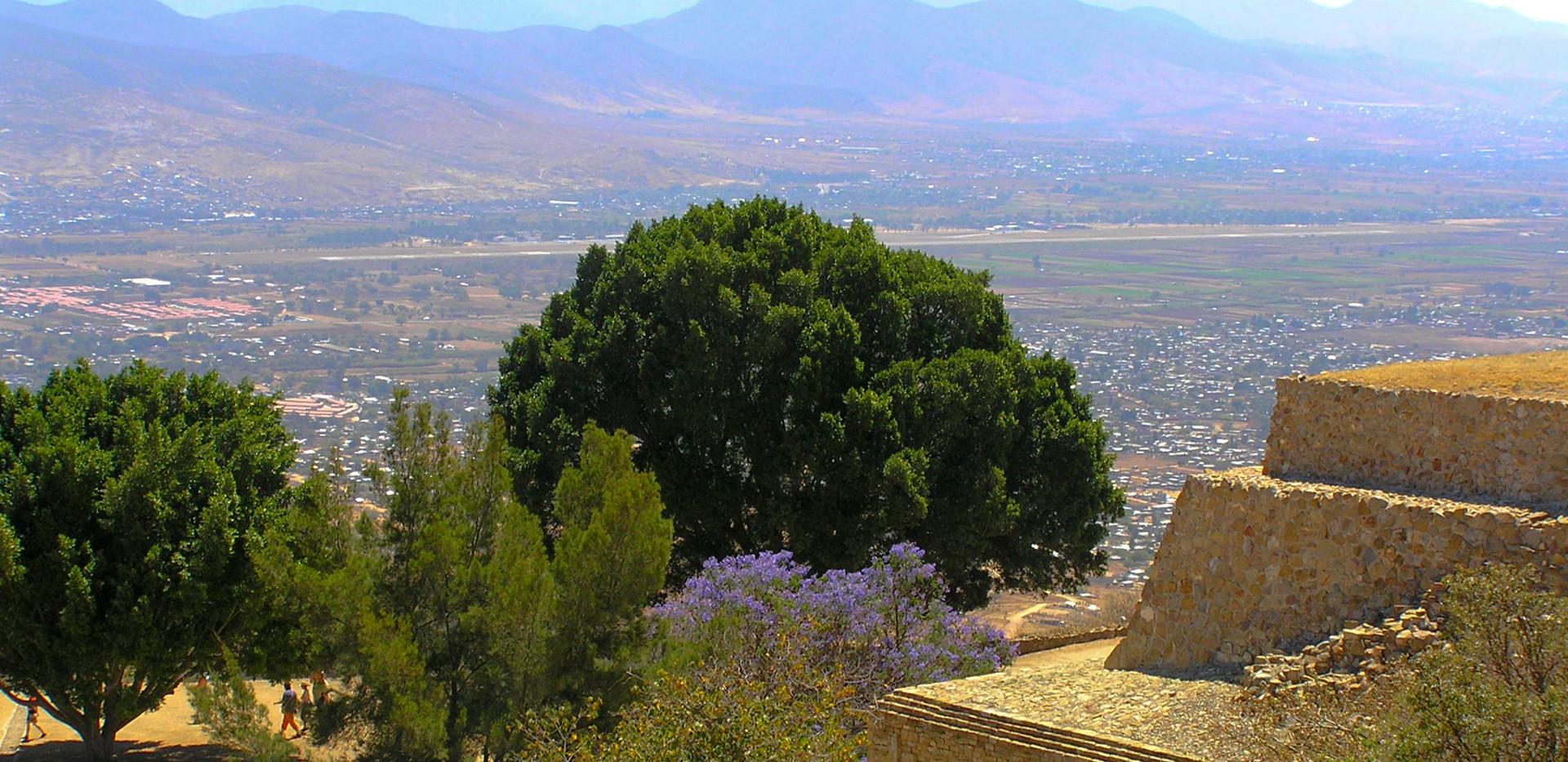 Oaxacan Vista.jpg