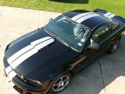 Black Mustang Roush