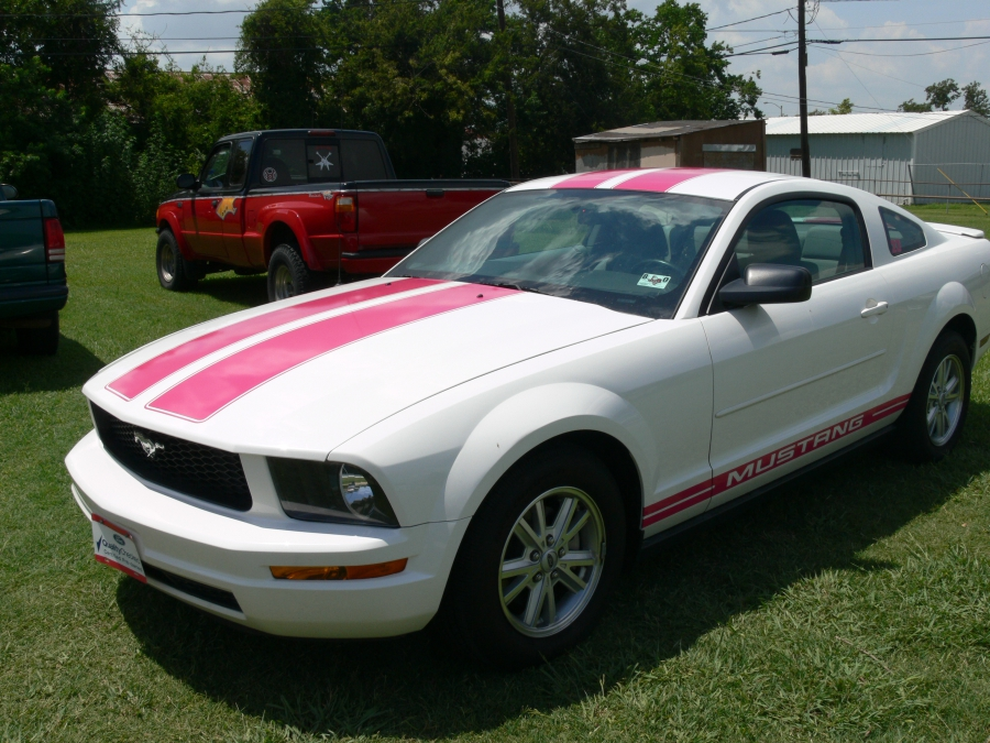 Mustang in Pink