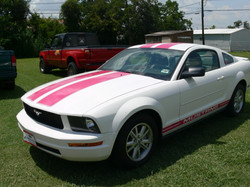Mustang in Pink