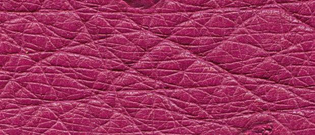 Shocking Pink SF
