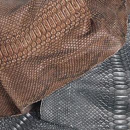 Python - Rustic Cover.jpg