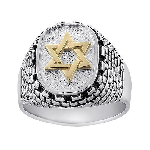 Sterling Silver and Gold Star of David and Western Wall Ring