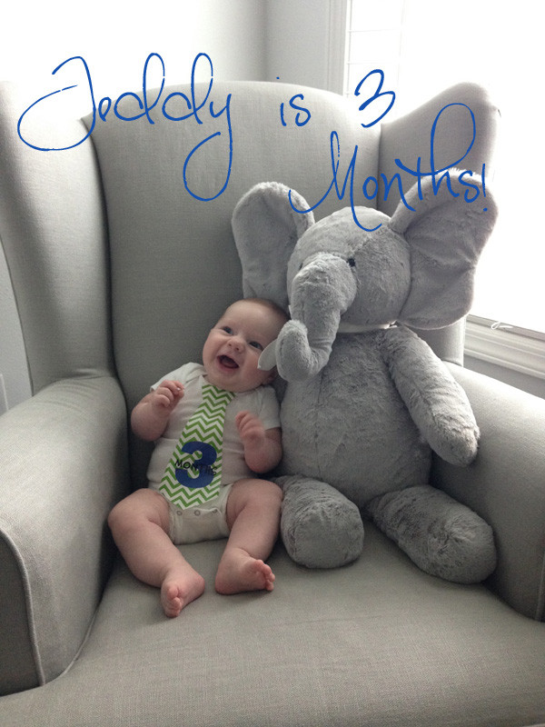 Teddy 3 Months