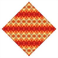 Orange flower diamond bandana.jpg