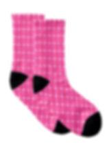 pws socks CO copy.jpg