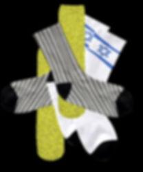 socks icon.jpg