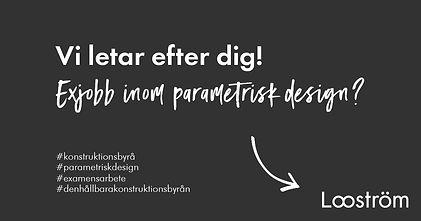 Exjobb-parametrisk-design.jpeg