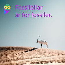 Fossilbilar-fossiler.jpg