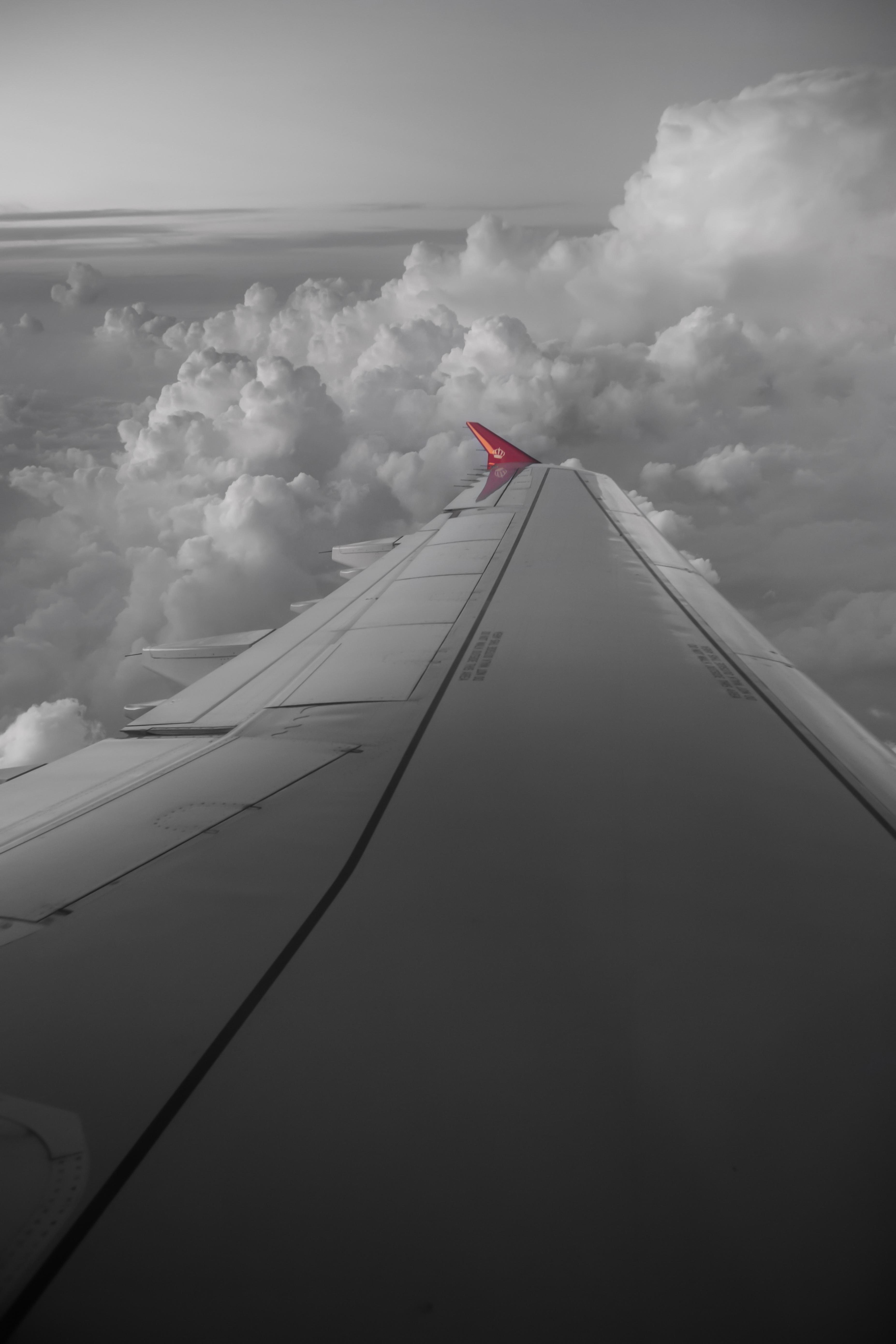 Royal Jordanian Flight