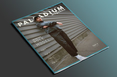 PalladiumMockup2 copy.jpg