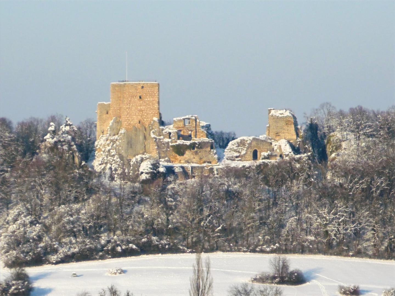 Le château du Landskrön à Leymen