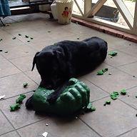 Barnabas Hulk.jpg