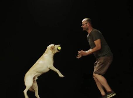 Hund und Mensch - der besondere TV-Tipp für die Freunde der Vierbeiner - empfehlenswert!