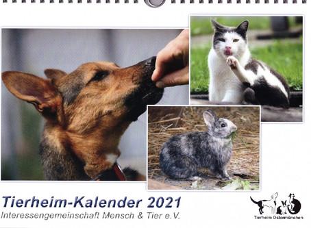 Tierheimkalender 2021 - ein Augenschmaus garniert mit Kommentaren zum Schmunzeln