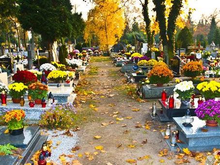 Allerheiligen  1. November keine Vermittlung im Tierheim - auch wir gedenken den Verstorbenen!
