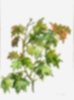 ,ציור,תל אביב,art,israeli art, abstract painting, Carmela eldar,כרמלה אלדר, art for sale, oil painting,img,אמנות למכירה