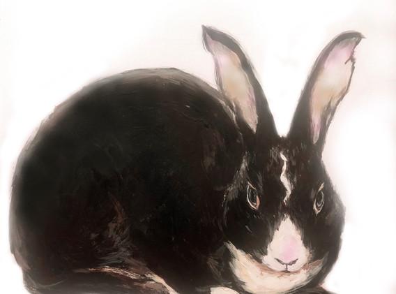 Colored Portrait