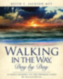 walking in the way revised book cover.jp