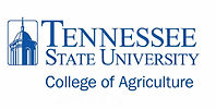 tennessee state.jpg