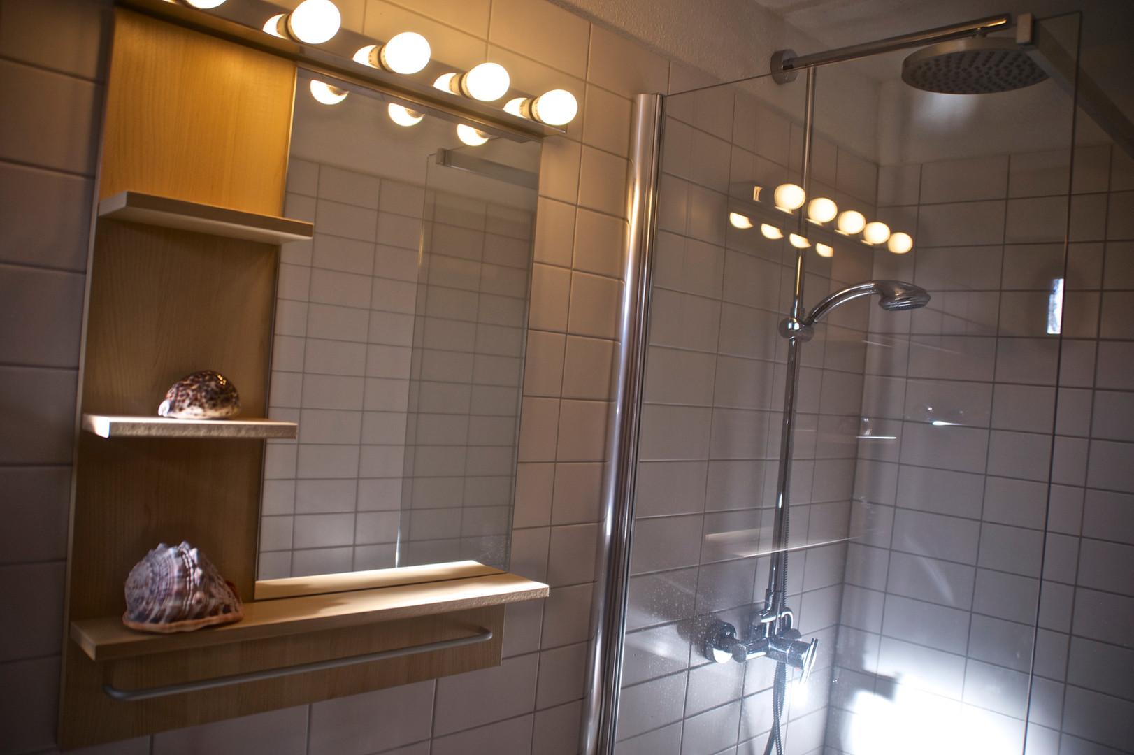 lower bathroom 3.jpg