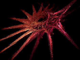 Les fractales (2/2)