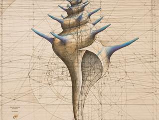Illustrations de la beauté mathématique de la nature