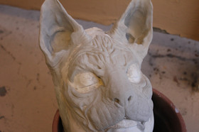 Cat Creature Prosthetic