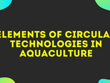 ELEMENTS OF CIRCULAR TECHNOLOGIES IN AQUACULTURE ON THE WATERS OF ENERGY FACILITIES