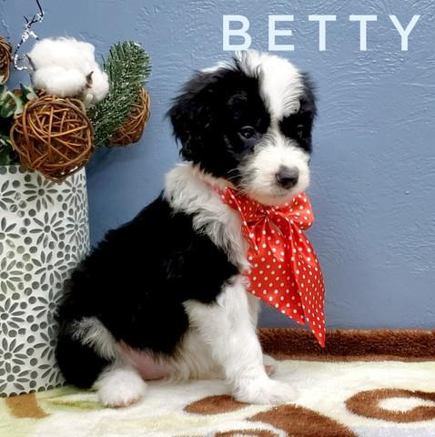 BETTY (6).jpeg