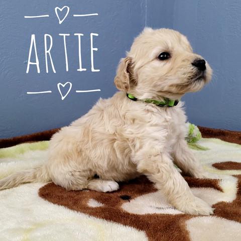 Artie