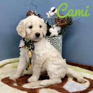 Cami (3).jpeg