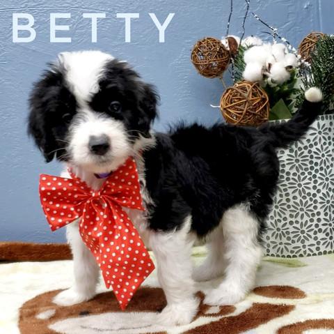 BETTY (7).jpeg
