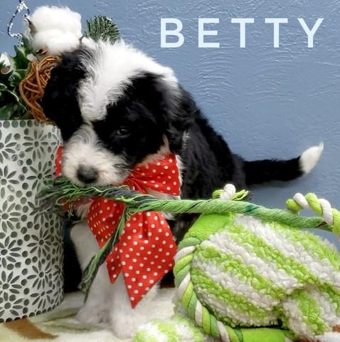 BETTY (4).jpeg