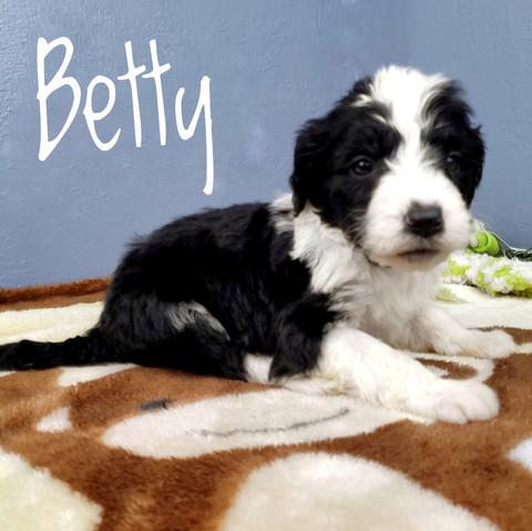 betty (1).jpeg
