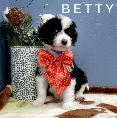 BETTY (5).jpeg