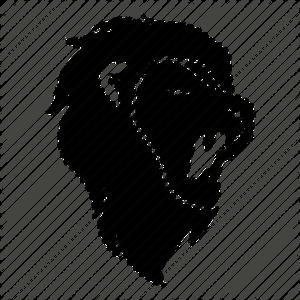 The Zodiac Lion
