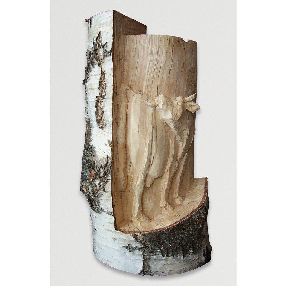 Birkenholz 60 x 30 cm