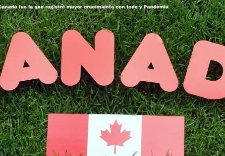 La industria del cannabis en Canadá fue la que registró mayor crecimiento con todo y Pandemia